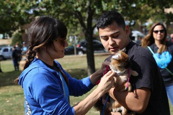 chicago-community-pet-coalition-community-pet-day-8